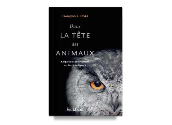 Dans la tête des animaux / In the Head of Animals – Doré