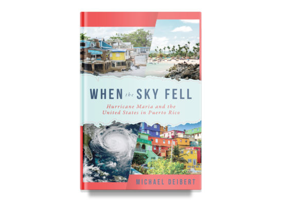 WHEN THE SKY FELL / Michael Deibert