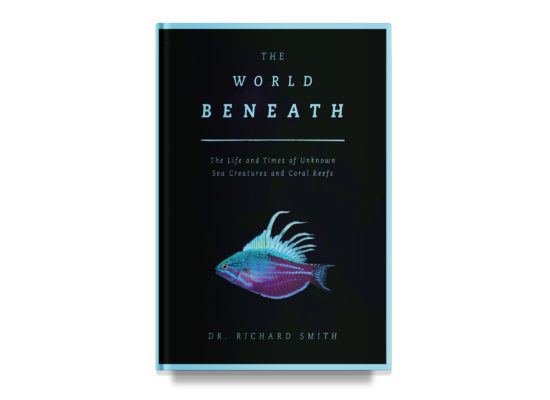 The World Beneath / Richard Smith