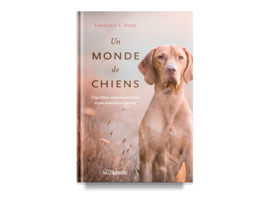 Un monde de chiens / A World of Dogs – Doré
