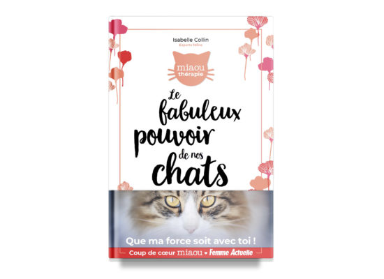 The Extraordinary Power of Cats / Le fabuleux pouvoir de nos chats / Collin